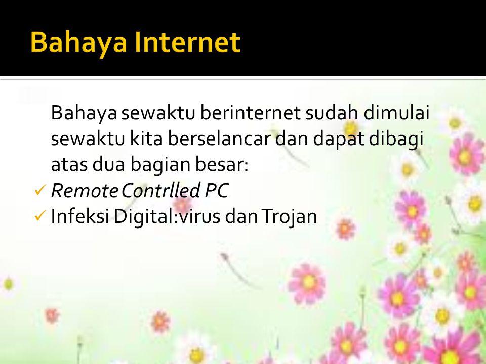 Bahaya sewaktu berinternet sudah dimulai sewaktu kita berselancar dan dapat dibagi atas dua bagian besar: Remote Contrlled PC Infeksi Digital:virus da