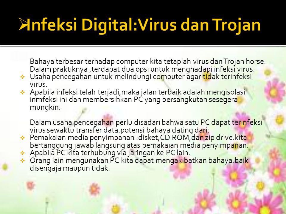 Bahaya terbesar terhadap computer kita tetaplah virus dan Trojan horse. Dalam praktiknya,terdapat dua opsi untuk menghadapi infeksi virus.  Usaha pen