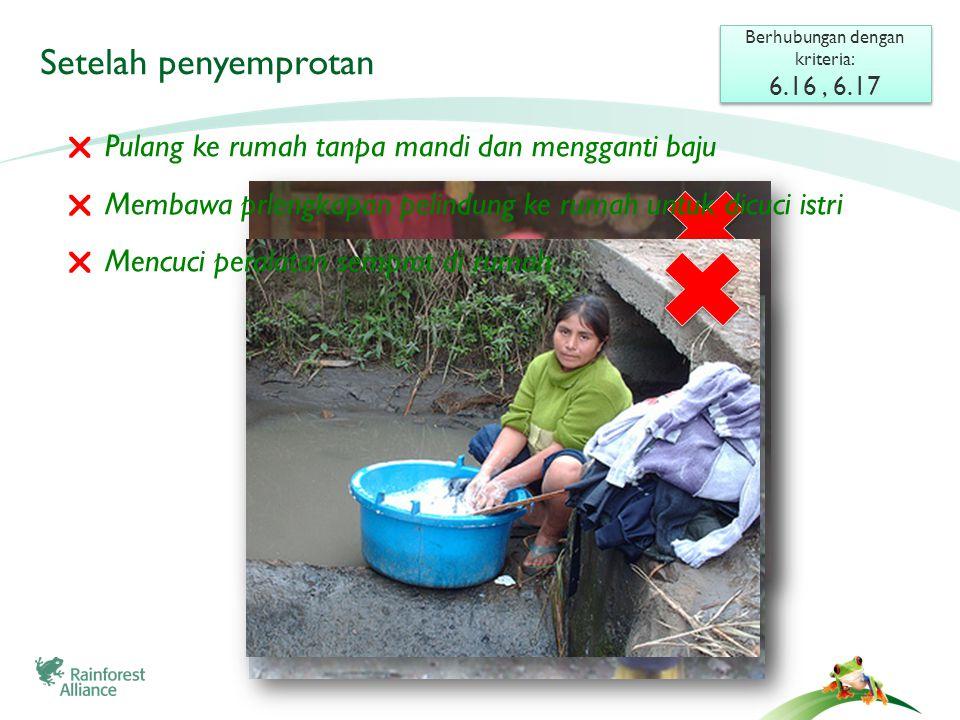Setelah penyemprotan Berhubungan dengan kriteria: 6.16, 6.17 Berhubungan dengan kriteria: 6.16, 6.17  Pulang ke rumah tanpa mandi dan mengganti baju  Membawa prlengkapan pelindung ke rumah untuk dicuci istri  Mencuci peralatan semprot di rumah