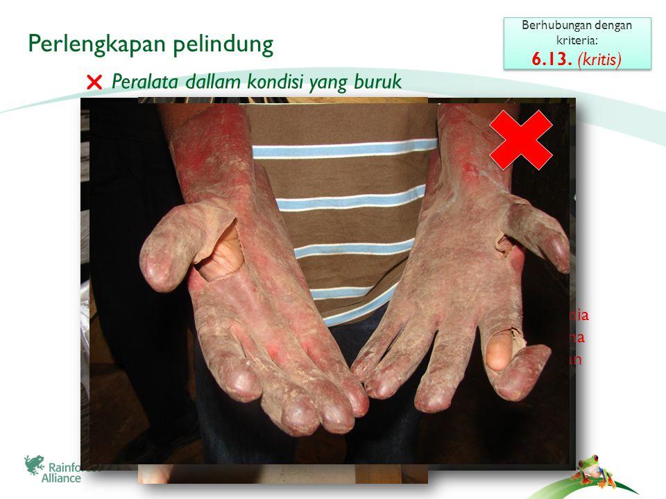 Bagaimana melindungi tubuh Anda dari bahan kimia Berhubungan dengan kriteria: 6.13.