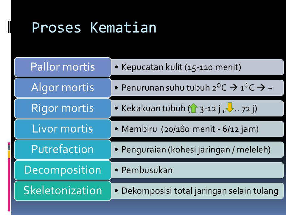 Proses Kematian Kepucatan kulit (15-120 menit) Pallor mortis Penurunan suhu tubuh 2 O C  1 O C  ~ Algor mortis Kekakuan tubuh ( 3-12 j,.. 72 j) Rigo