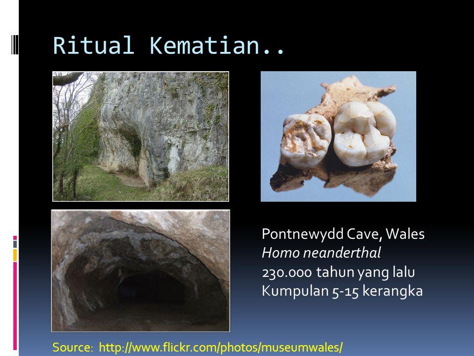 Ritual Kematian.. Pontnewydd Cave, Wales Homo neanderthal 230.000 tahun yang lalu Kumpulan 5-15 kerangka Source: http://www.flickr.com/photos/museumwa