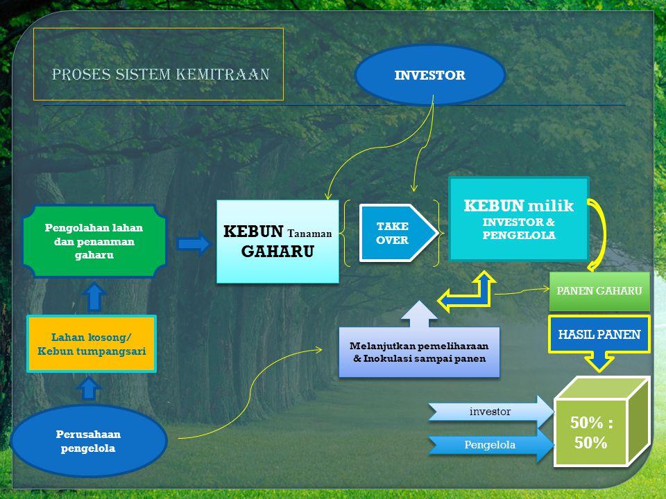Lahan kosong/ Kebun tumpangsari KEBUN Tanaman GAHARU INVESTOR KEBUN milik INVESTOR & PENGELOLA Melanjutkan pemeliharaan & Inokulasi sampai panen TAKE OVER PANEN GAHARU HASIL PANEN 50% : 50% investor Pengelola Perusahaan pengelola Pengolahan lahan dan penanman gaharu