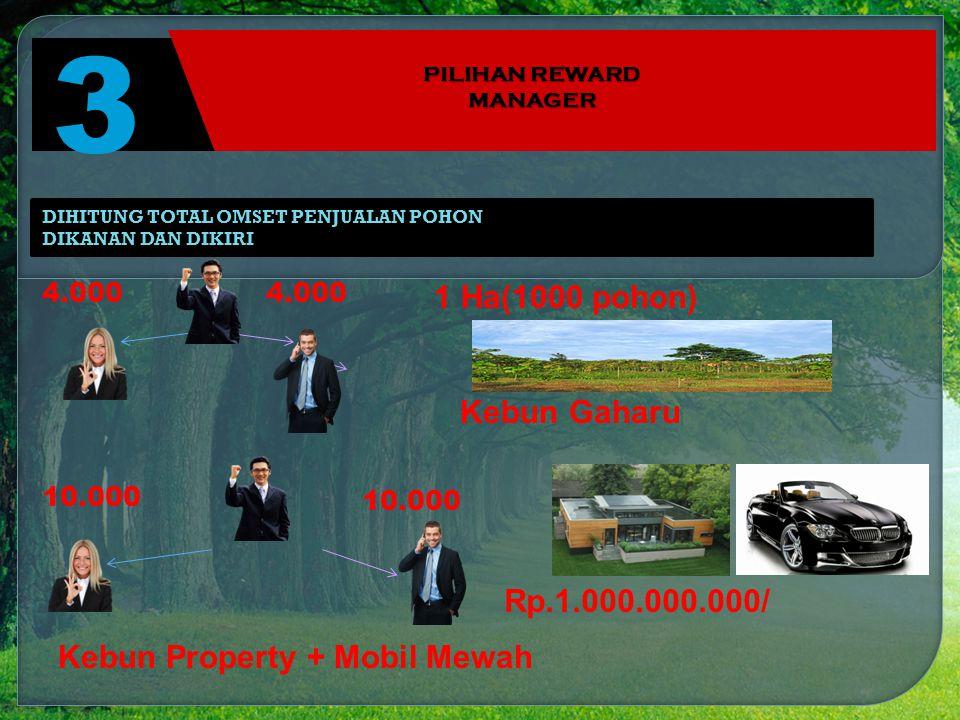 3 PILIHAN REWARD MANAGER 1 Ha(1000 pohon) Kebun Gaharu 4.000 10.000 Rp.1.000.000.000/ DIHITUNG TOTAL OMSET PENJUALAN POHON DIKANAN DAN DIKIRI Kebun Property + Mobil Mewah