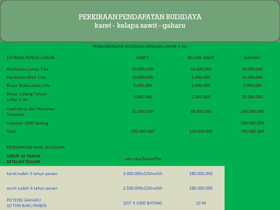 PIN PLAN A Rp.100.000 100.000 Unlimited 100.000 Unlimited BONUS PENGEMBANGAN LEVEL