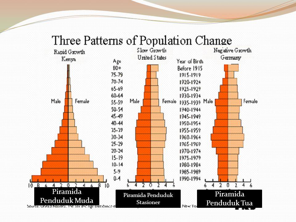 Piramida Penduduk Muda Piramida Penduduk Stasioner Piramida Penduduk Tua
