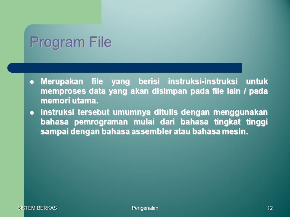 SISTEM BERKAS Pengenalan12 Program File Merupakan file yang berisi instruksi-instruksi untuk memproses data yang akan disimpan pada file lain / pada m