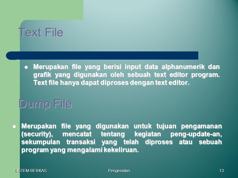 SISTEM BERKAS Pengenalan13 Text File Merupakan file yang berisi input data alphanumerik dan grafik yang digunakan oleh sebuah text editor program. Tex