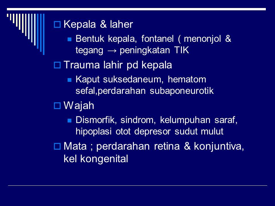  Kepala & laher Bentuk kepala, fontanel ( menonjol & tegang → peningkatan TIK  Trauma lahir pd kepala Kaput suksedaneum, hematom sefal,perdarahan su