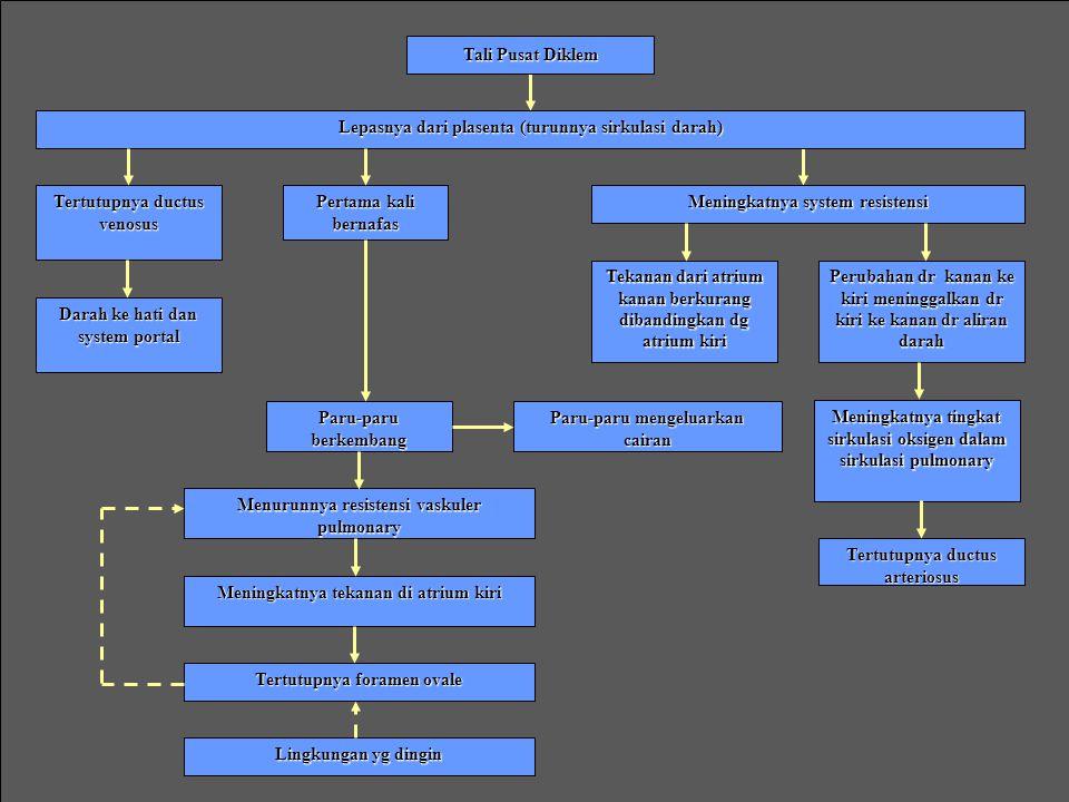 ADAPTASI PSIKOLOGIS 1. Periode reactivity pertama 2. Periode tidur 3. Periode reactivity kedua