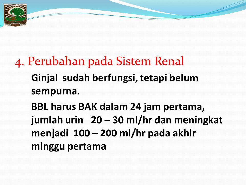 4.Perubahan pada Sistem Renal Ginjal sudah berfungsi, tetapi belum sempurna.