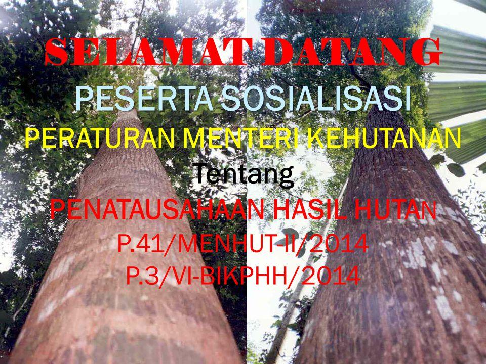 SELAMAT DATANG PESERTA SOSIALISASI PERATURAN MENTERI KEHUTANAN Tentang PENATAUSAHAAN HASIL HUTA N P.41/MENHUT-II/2014 P.3/VI-BIKPHH/2014