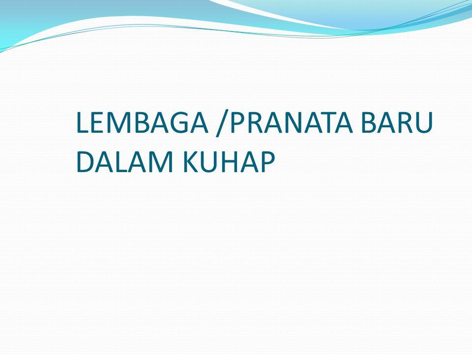 LEMBAGA /PRANATA BARU DALAM KUHAP