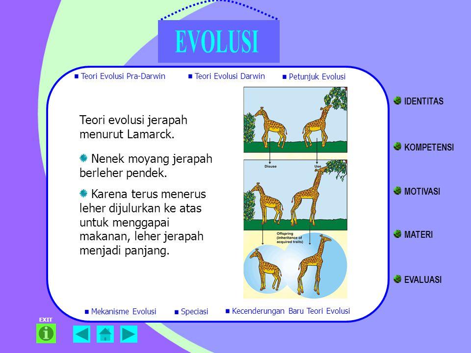 Teori evolusi jerapah menurut Lamarck. Nenek moyang jerapah berleher pendek. Karena terus menerus leher dijulurkan ke atas untuk menggapai makanan, le