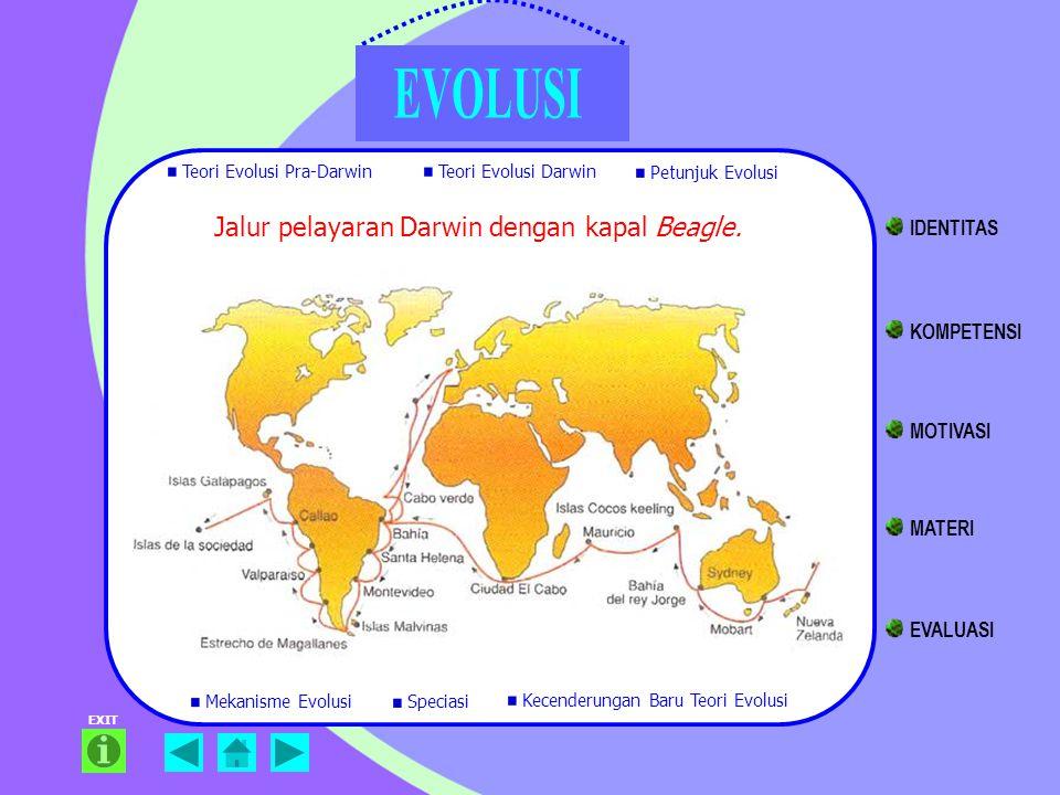 Jalur pelayaran Darwin dengan kapal Beagle. EXIT Teori Evolusi Pra-Darwin Teori Evolusi Darwin Petunjuk Evolusi Mekanisme Evolusi Kecenderungan Baru T