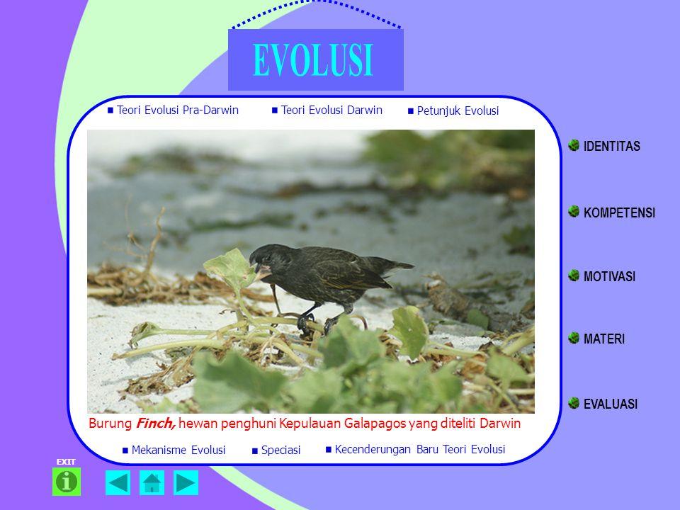 Burung Finch, hewan penghuni Kepulauan Galapagos yang diteliti Darwin EXIT Teori Evolusi Pra-Darwin Teori Evolusi Darwin Petunjuk Evolusi Mekanisme Ev