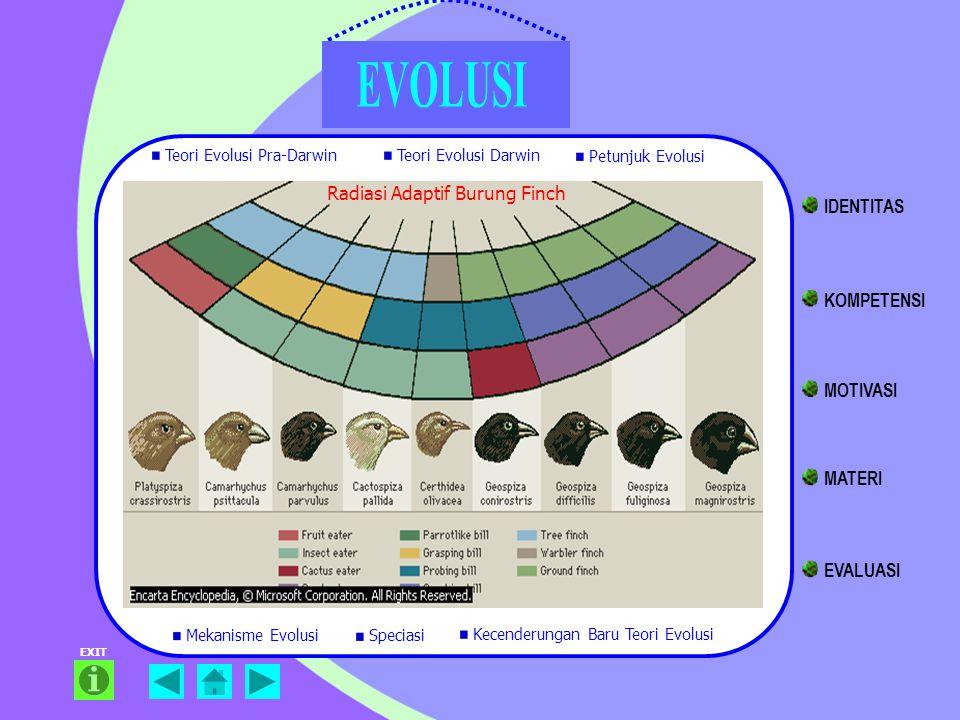 EXIT Radiasi Adaptif Burung Finch Teori Evolusi Pra-Darwin Teori Evolusi Darwin Petunjuk Evolusi Mekanisme Evolusi Kecenderungan Baru Teori Evolusi Sp