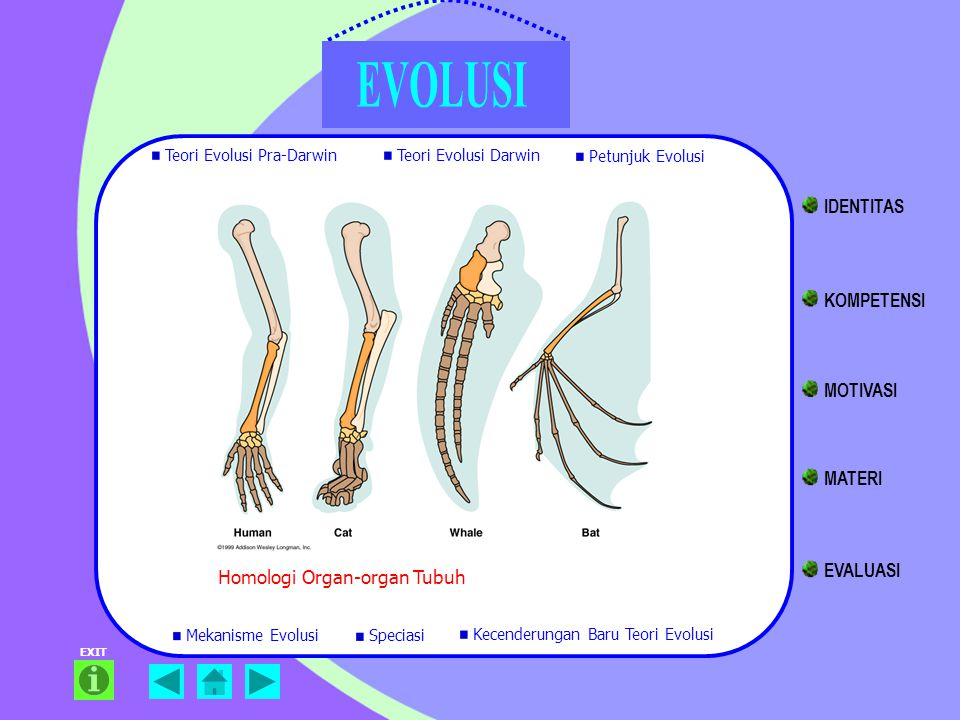 Homologi Organ-organ Tubuh EXIT Teori Evolusi Pra-Darwin Teori Evolusi Darwin Petunjuk Evolusi Mekanisme Evolusi Kecenderungan Baru Teori Evolusi Spec