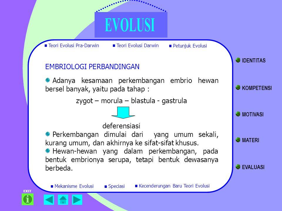 Adanya kesamaan perkembangan embrio hewan bersel banyak, yaitu pada tahap : zygot – morula – blastula - gastrula deferensiasi Perkembangan dimulai dar