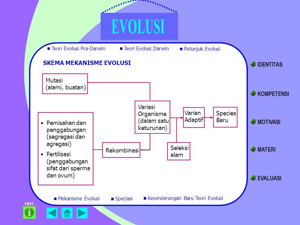 EXIT SKEMA MEKANISME EVOLUSI Mutasi (alami, buatan) Pemisahan dan penggabungan (segregasi dan agregasi) Fertilisasi (penggabungan sifat dari sperma da