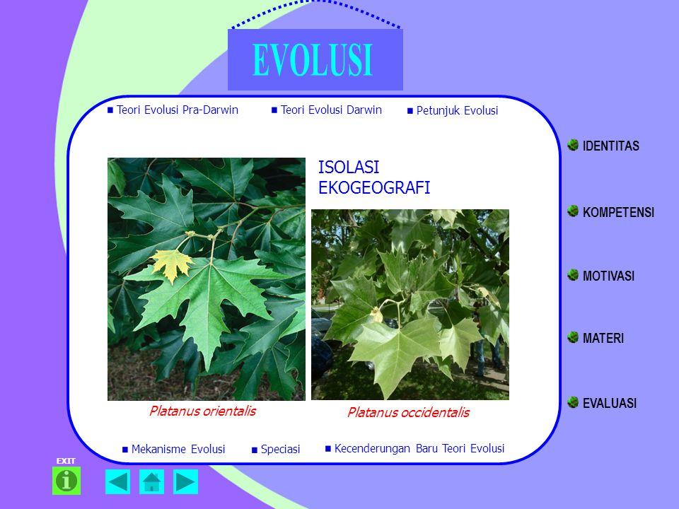 EXIT ISOLASI EKOGEOGRAFI Platanus orientalis Platanus occidentalis Teori Evolusi Pra-Darwin Teori Evolusi Darwin Petunjuk Evolusi Mekanisme Evolusi Ke