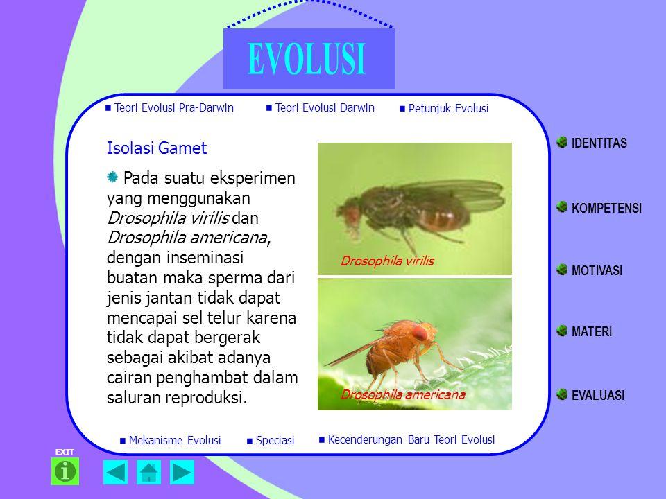 EXIT Isolasi Gamet Pada suatu eksperimen yang menggunakan Drosophila virilis dan Drosophila americana, dengan inseminasi buatan maka sperma dari jenis