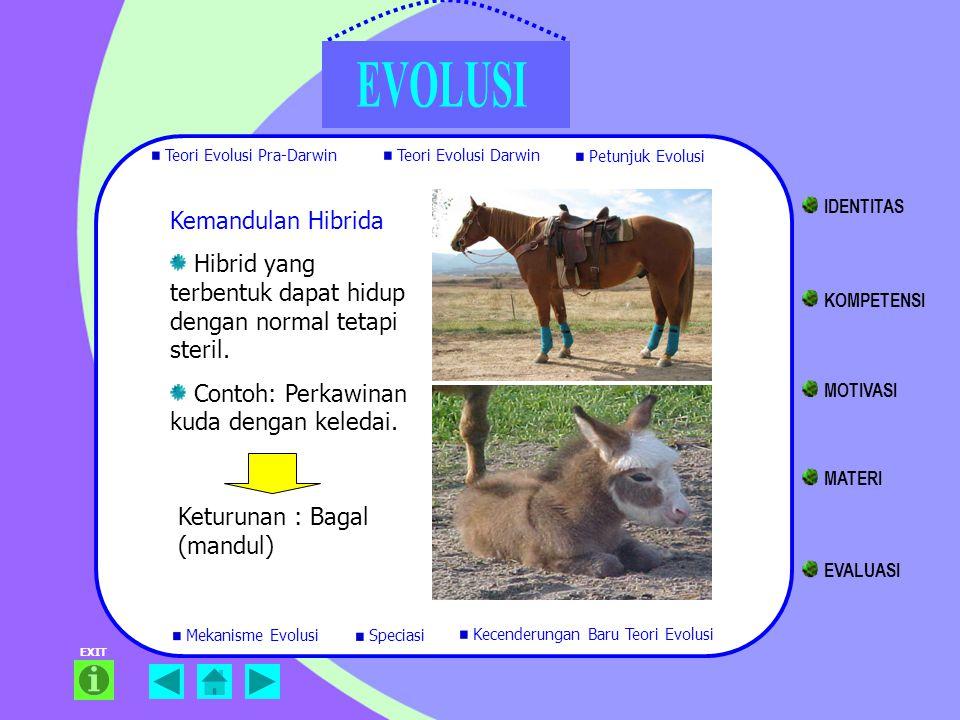 EXIT Kemandulan Hibrida Hibrid yang terbentuk dapat hidup dengan normal tetapi steril. Contoh: Perkawinan kuda dengan keledai. Keturunan : Bagal (mand