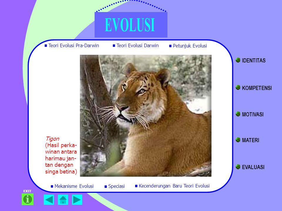 EXIT Tigon (Hasil perka- winan antara harimau jan- tan dengan singa betina) Teori Evolusi Pra-Darwin Teori Evolusi Darwin Petunjuk Evolusi Mekanisme E