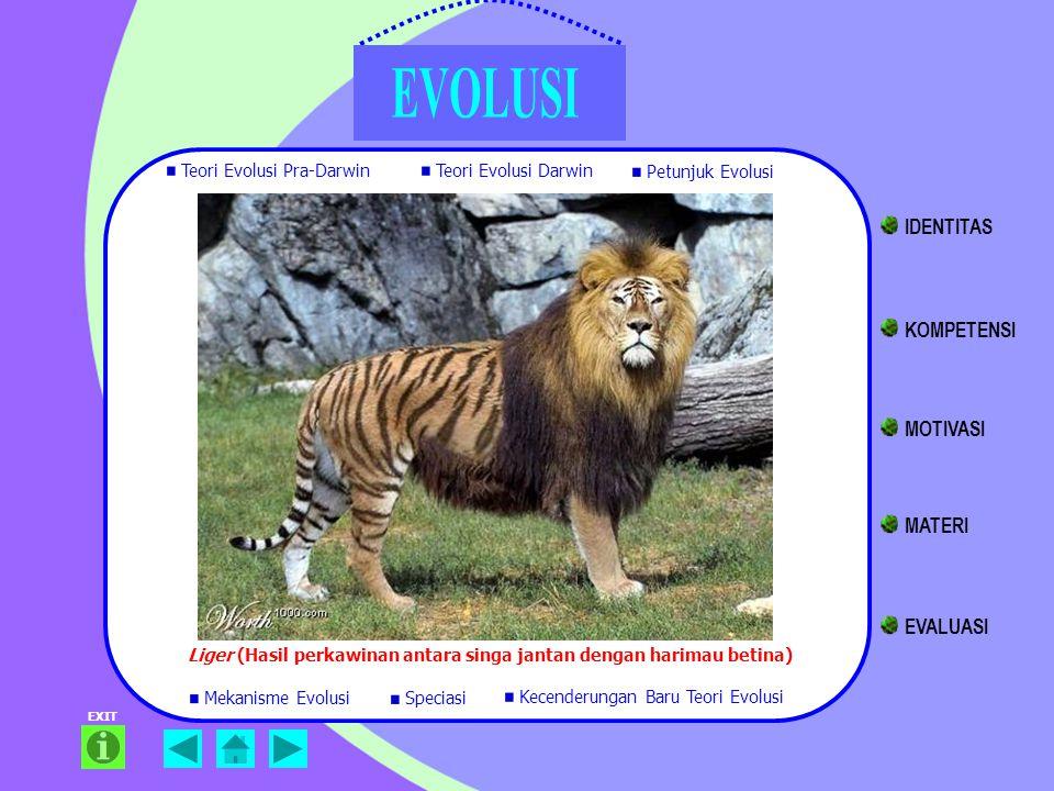 EXIT Liger (Hasil perkawinan antara singa jantan dengan harimau betina) Teori Evolusi Pra-Darwin Teori Evolusi Darwin Petunjuk Evolusi Mekanisme Evolu