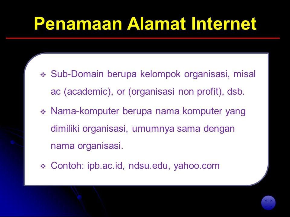 Penamaan Alamat Internet   Sub-Domain berupa kelompok organisasi, misal ac (academic), or (organisasi non profit), dsb.   Nama-komputer berupa nam