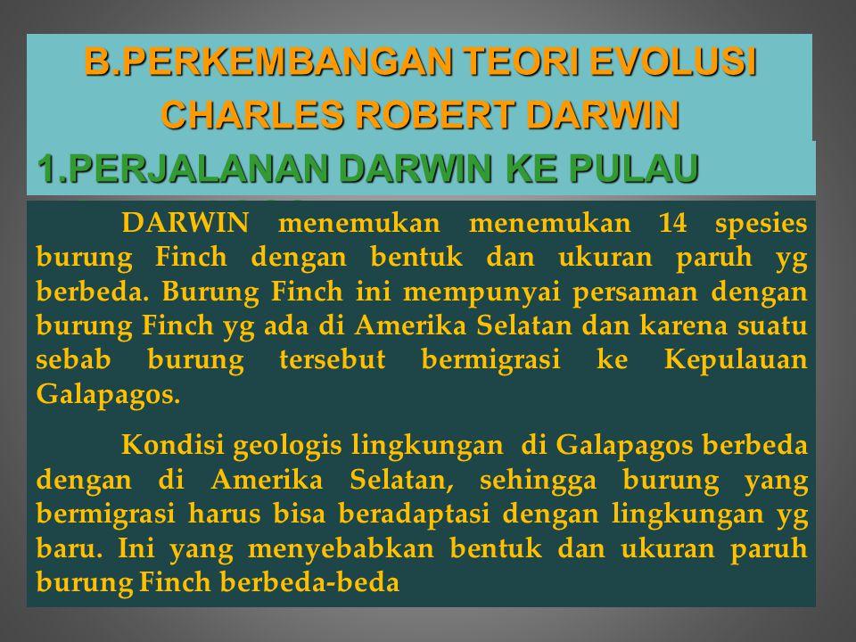 B.P ERKEMBANGAN TEORI EVOLUSI CHARLES ROBERT DARWIN 1.PERJALANAN DARWIN KE PULAU GALAPAGOS DARWIN menemukan menemukan 14 spesies burung Finch dengan b