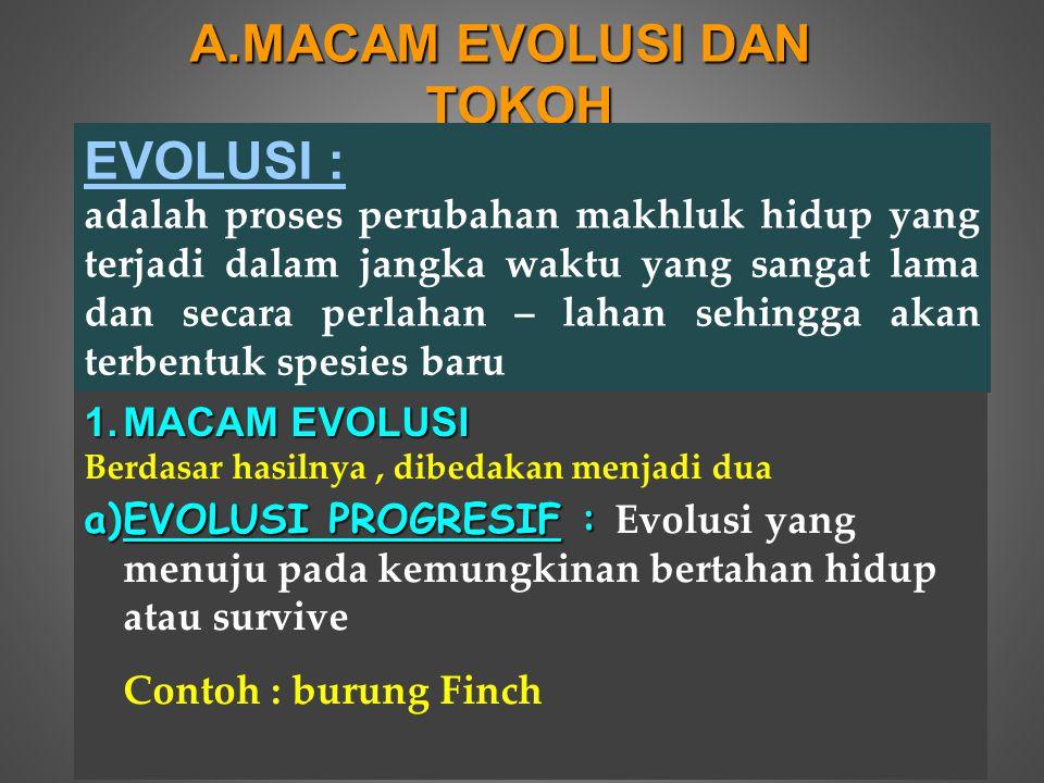 2.TOKOH YG MENGEMUKAKAN GAGASAN TENTANG EVOLUSI a.ARISTOTELES dan ANAXIMANDER Mendasari gagasan Evolusi dgn metafisika yaitu alam mengalami perubahan dari bentuk sederhana menjadi bentuk yg lebih kompleks / sempurna b.ERASMUS DARWIN Menyatakan bahwa fungsional terhadap rangsangan adalah diwariskan c.COUNT DE BUFFON Menyatakan bahwa variasi – variasi kecil yg terjadi karena pengaruh alam sekitar diwariskan, sehingga terjadi penimbunan variasi yg ada