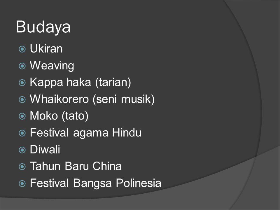 Budaya  Ukiran  Weaving  Kappa haka (tarian)  Whaikorero (seni musik)  Moko (tato)  Festival agama Hindu  Diwali  Tahun Baru China  Festival