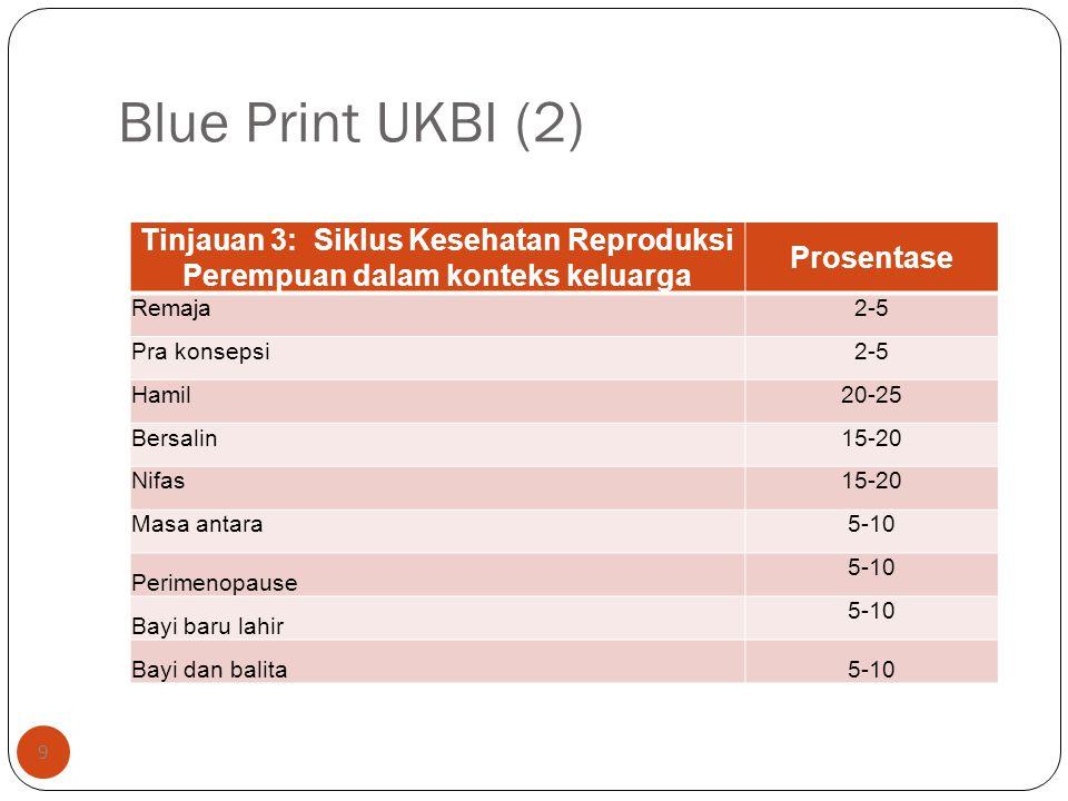 Blue Print UKBI (2) 9 Tinjauan 3: Siklus Kesehatan Reproduksi Perempuan dalam konteks keluarga Prosentase Remaja2-5 Pra konsepsi2-5 Hamil20-25 Bersali