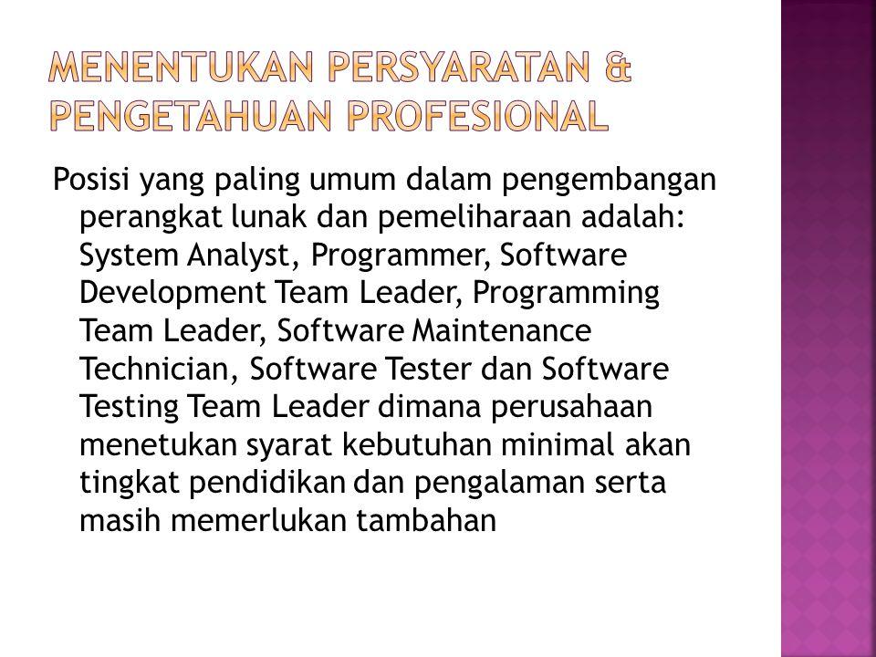Posisi yang paling umum dalam pengembangan perangkat lunak dan pemeliharaan adalah: System Analyst, Programmer, Software Development Team Leader, Programming Team Leader, Software Maintenance Technician, Software Tester dan Software Testing Team Leader dimana perusahaan menetukan syarat kebutuhan minimal akan tingkat pendidikan dan pengalaman serta masih memerlukan tambahan