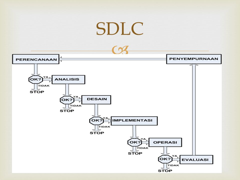  SDLC