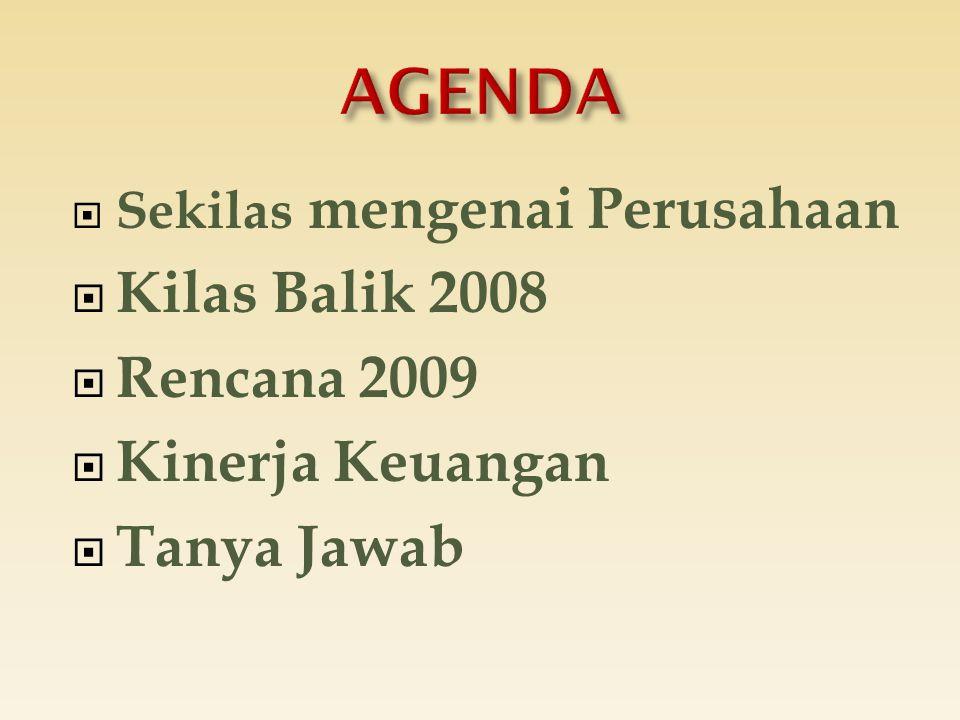  Sekilas mengenai Perusahaan  Kilas Balik 2008  Rencana 2009  Kinerja Keuangan  Tanya Jawab