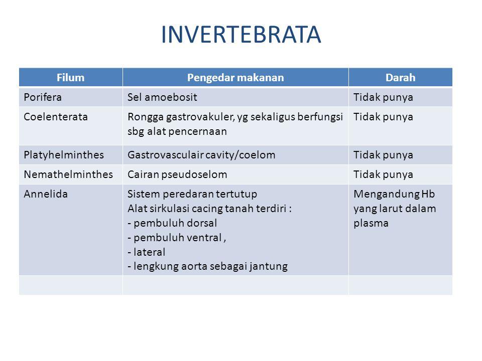 INVERTEBRATA FilumPengedar makananDarah PoriferaSel amoebositTidak punya CoelenterataRongga gastrovakuler, yg sekaligus berfungsi sbg alat pencernaan Tidak punya PlatyhelminthesGastrovasculair cavity/coelomTidak punya NemathelminthesCairan pseudoselomTidak punya AnnelidaSistem peredaran tertutup Alat sirkulasi cacing tanah terdiri : - pembuluh dorsal - pembuluh ventral, - lateral - lengkung aorta sebagai jantung Mengandung Hb yang larut dalam plasma