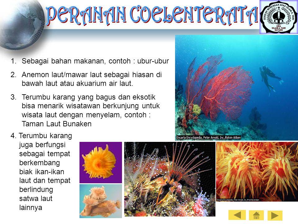 1.Sebagai bahan makanan, contoh : ubur-ubur 2.Anemon laut/mawar laut sebagai hiasan di bawah laut atau akuarium air laut. 3.Terumbu karang yang bagus