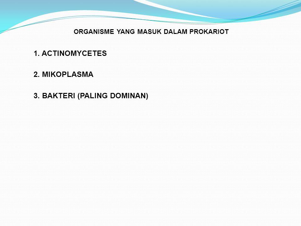 ORGANISME YANG MASUK DALAM PROKARIOT 1. ACTINOMYCETES 2. MIKOPLASMA 3. BAKTERI (PALING DOMINAN)