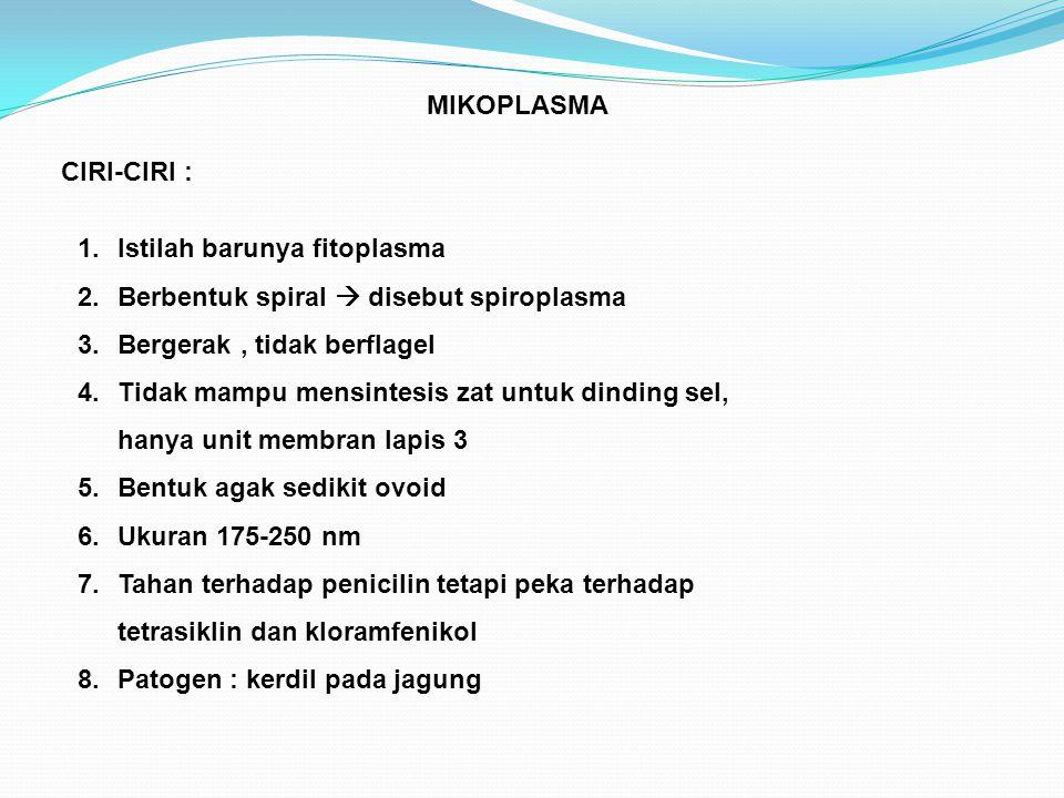 MIKOPLASMA CIRI-CIRI : 1.Istilah barunya fitoplasma 2.Berbentuk spiral  disebut spiroplasma 3.Bergerak, tidak berflagel 4.Tidak mampu mensintesis zat