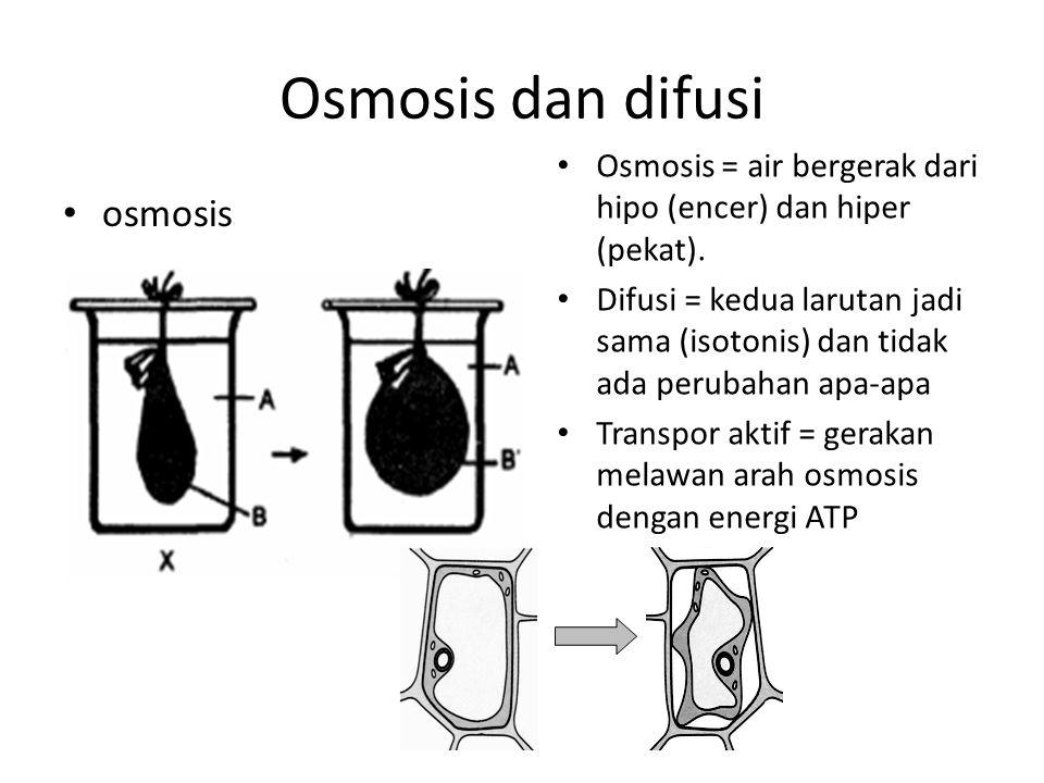 Osmosis dan difusi osmosis Osmosis = air bergerak dari hipo (encer) dan hiper (pekat). Difusi = kedua larutan jadi sama (isotonis) dan tidak ada perub