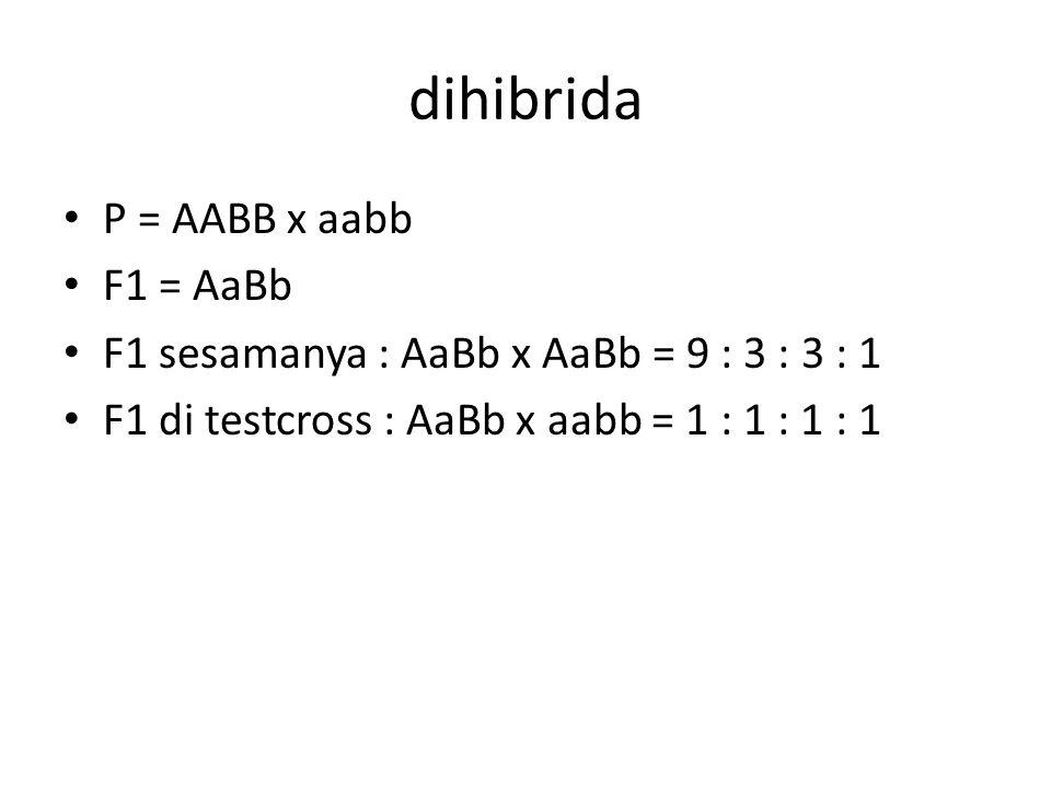 dihibrida P = AABB x aabb F1 = AaBb F1 sesamanya : AaBb x AaBb = 9 : 3 : 3 : 1 F1 di testcross : AaBb x aabb = 1 : 1 : 1 : 1