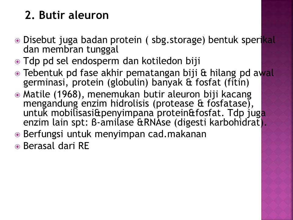 2. Butir aleuron  Disebut juga badan protein ( sbg.storage) bentuk sperikal dan membran tunggal  Tdp pd sel endosperm dan kotiledon biji  Tebentuk