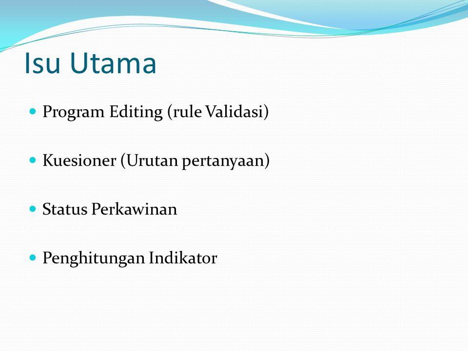 Isu Utama Program Editing (rule Validasi) Kuesioner (Urutan pertanyaan) Status Perkawinan Penghitungan Indikator