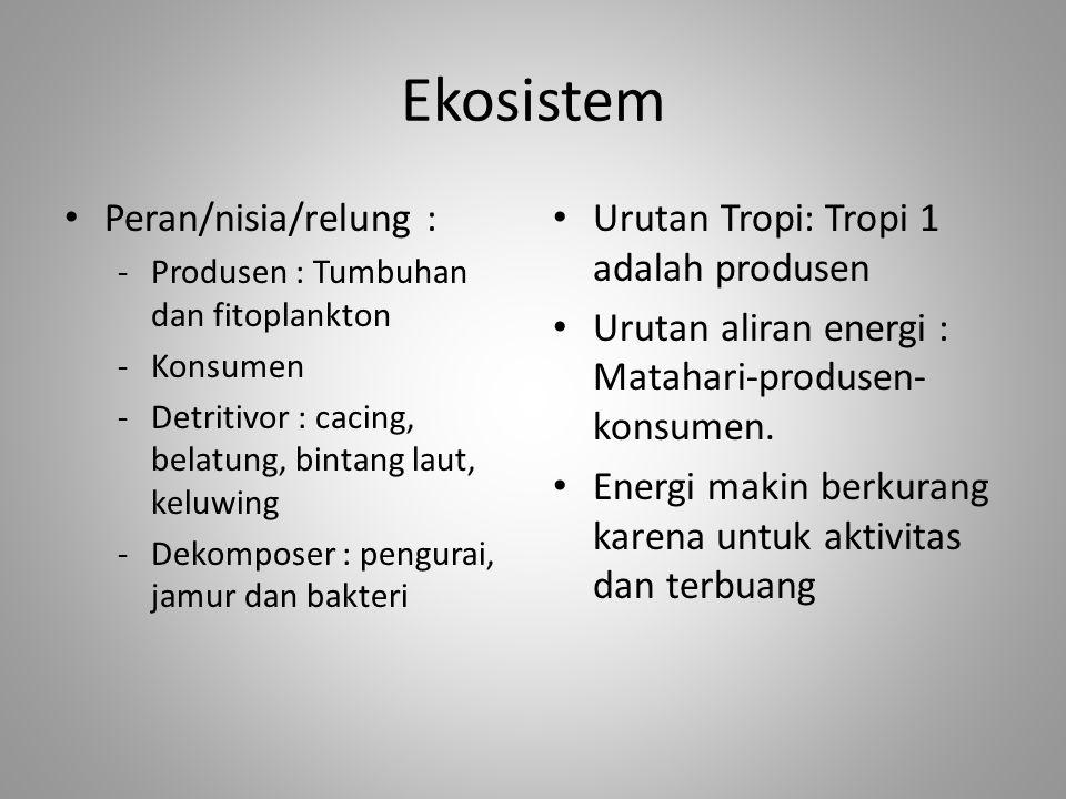 Ekosistem Peran/nisia/relung : -Produsen : Tumbuhan dan fitoplankton -Konsumen -Detritivor : cacing, belatung, bintang laut, keluwing -Dekomposer : pe