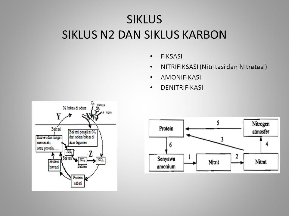 SIKLUS SIKLUS N2 DAN SIKLUS KARBON FIKSASI NITRIFIKSASI (Nitritasi dan Nitratasi) AMONIFIKASI DENITRIFIKASI