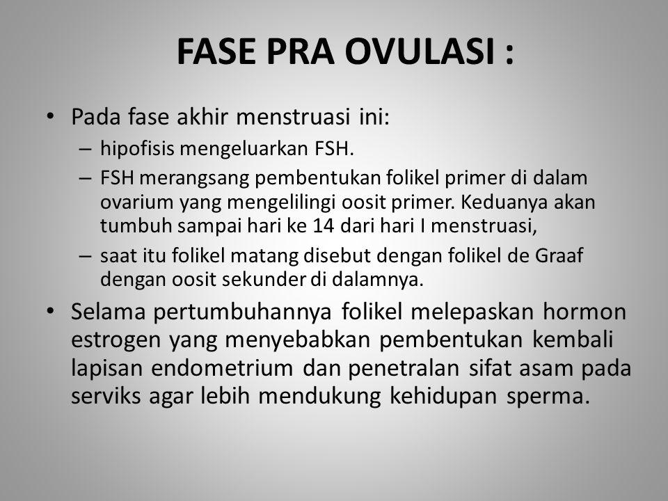 FASE PRA OVULASI : Pada fase akhir menstruasi ini: – hipofisis mengeluarkan FSH. – FSH merangsang pembentukan folikel primer di dalam ovarium yang men