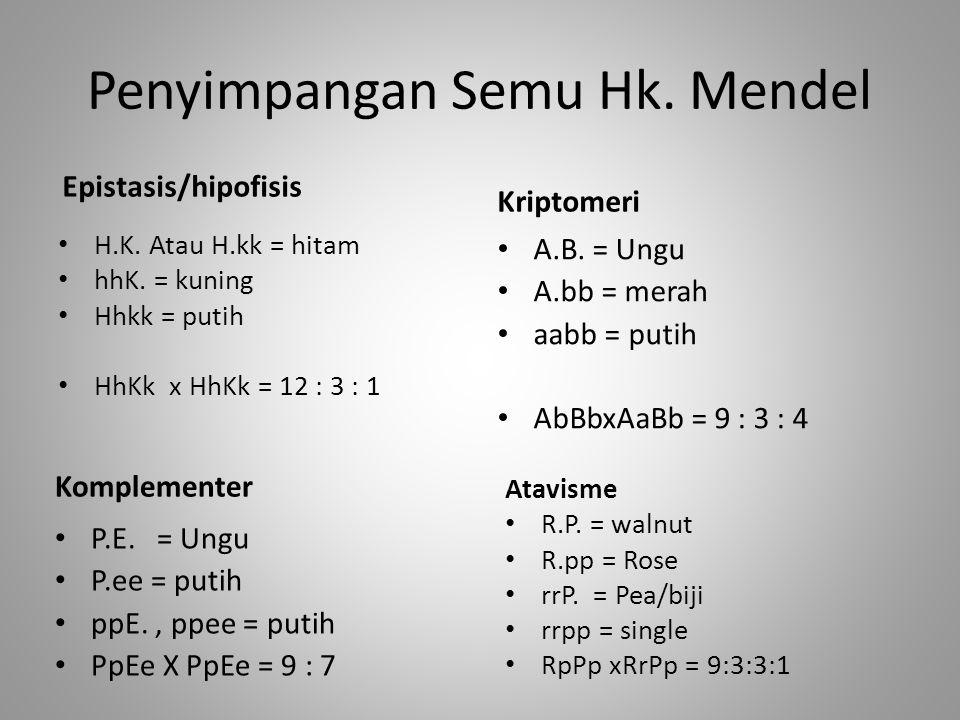 Penyimpangan Semu Hk. Mendel Epistasis/hipofisis H.K. Atau H.kk = hitam hhK. = kuning Hhkk = putih HhKk x HhKk = 12 : 3 : 1 Kriptomeri A.B. = Ungu A.b