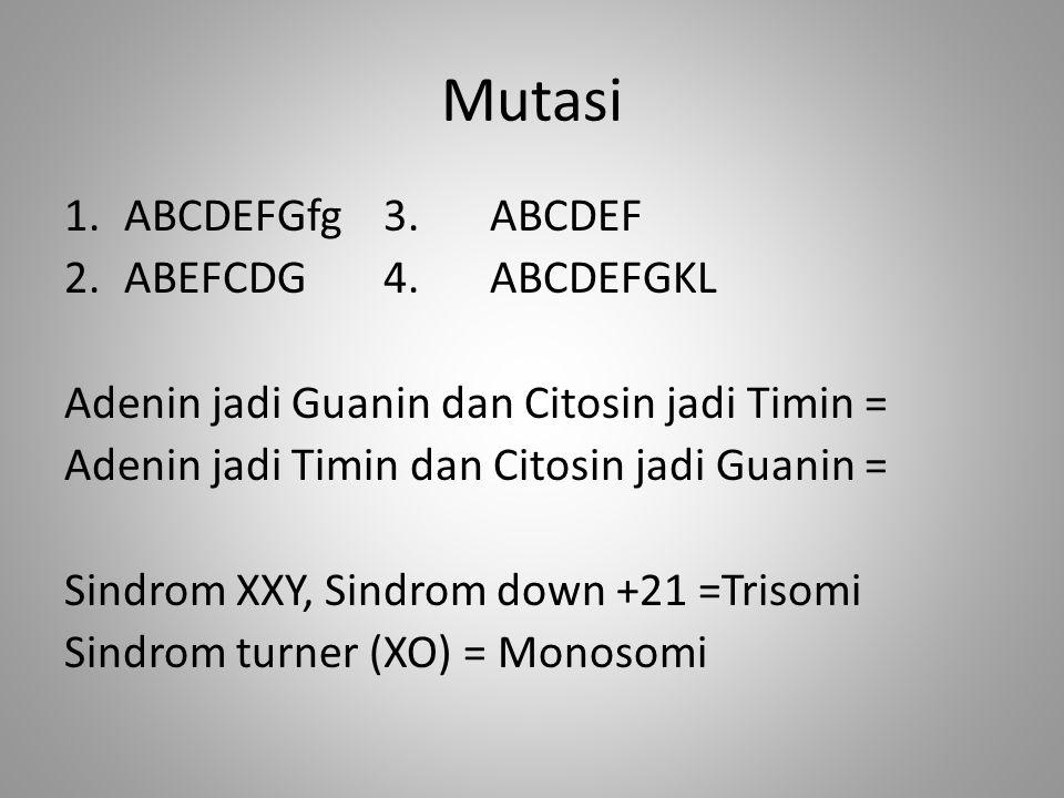 Mutasi 1.ABCDEFGfg3. ABCDEF 2.ABEFCDG4.ABCDEFGKL Adenin jadi Guanin dan Citosin jadi Timin = Adenin jadi Timin dan Citosin jadi Guanin = Sindrom XXY,